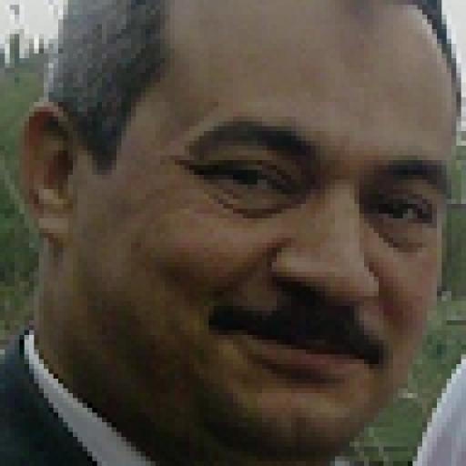 Mohamed Gomaa2432