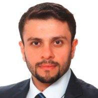Taha A. Elwi