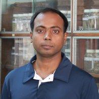 @kumar-avinash-bharati (active)